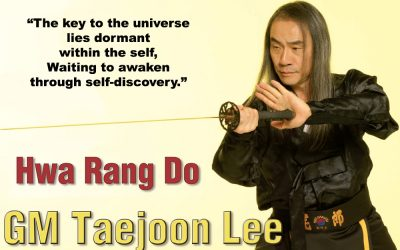 Grandmaster Taejoon Lee's Interview by Budo International Part 3&4 (Different aspects of Hwa Rang Do®)